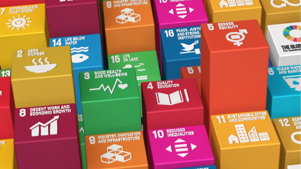Tener objetivos de sostenibilidad